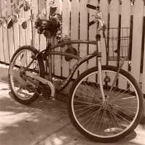Our Key West Bike Tour Hotel Special